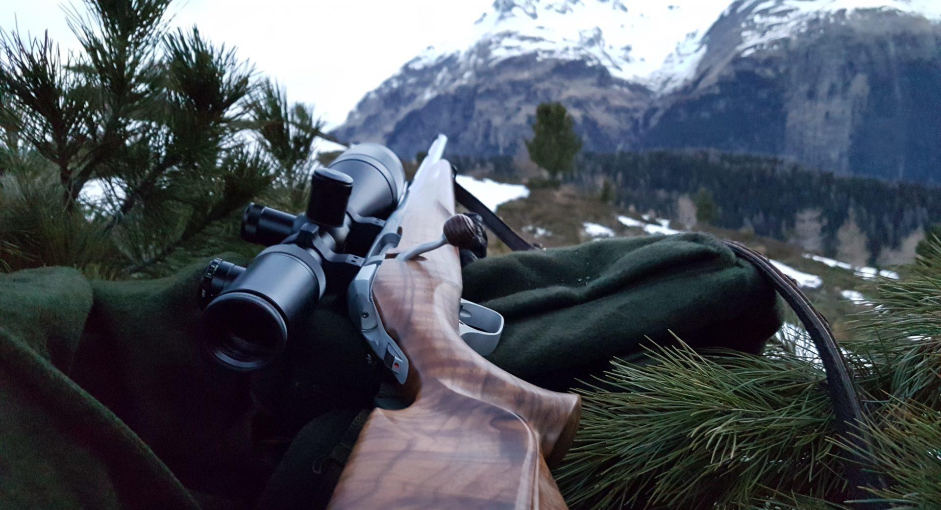 Jagdausübung während Verkehrsbeschränkungen   Tiroler Jägerverband
